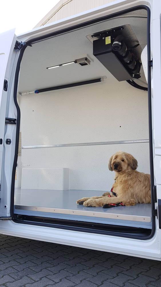 Laderaumbeschichtung in einem Transporter zum Tiertransport